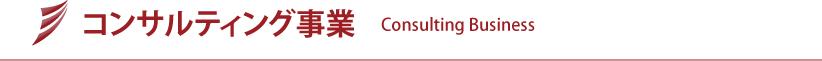 コンサルティング事業   Consulting Business