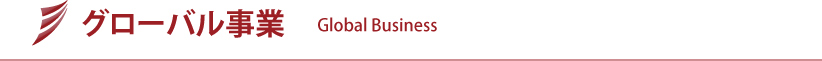 グローバル事業 | Global Business